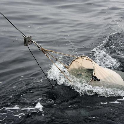 zooplankton net. RADIALES cruise